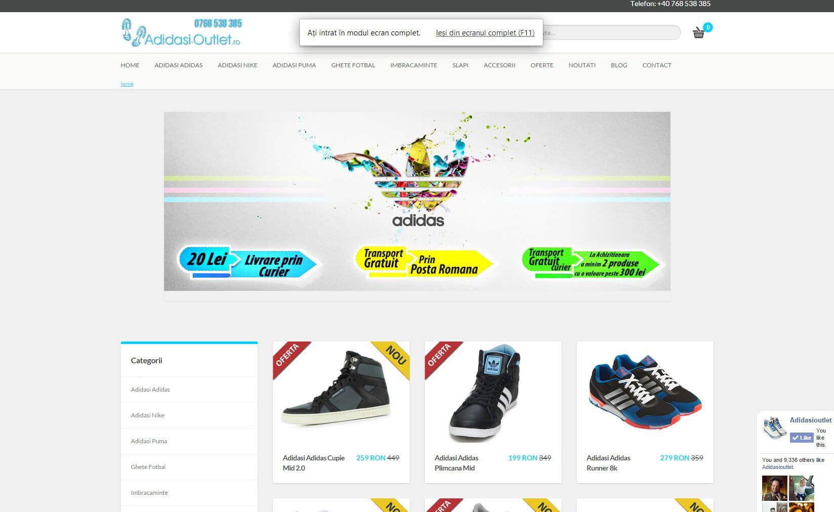 Agentie de Web Design Timisoara