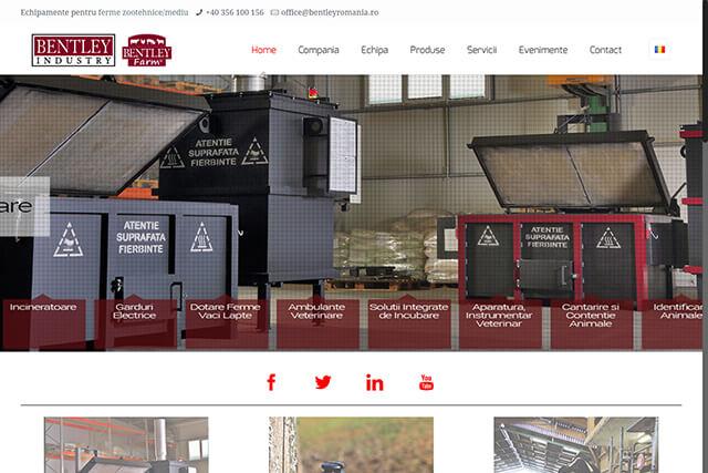 Web Design Timisoara Bentley Industry