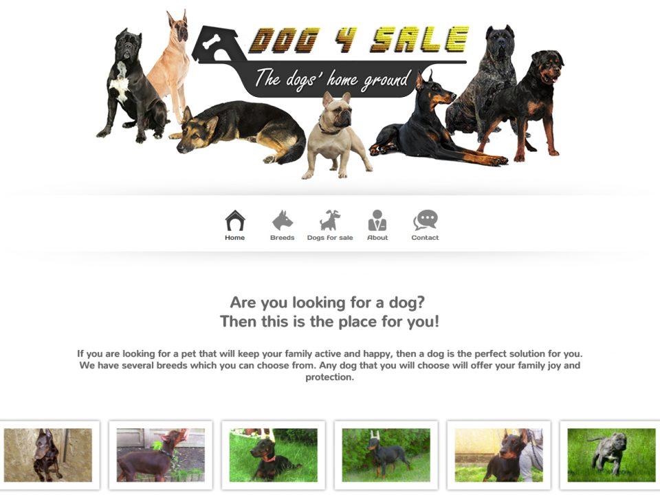 Optimizare SEO | Agentie Web Design Timisoara Dog4Sale