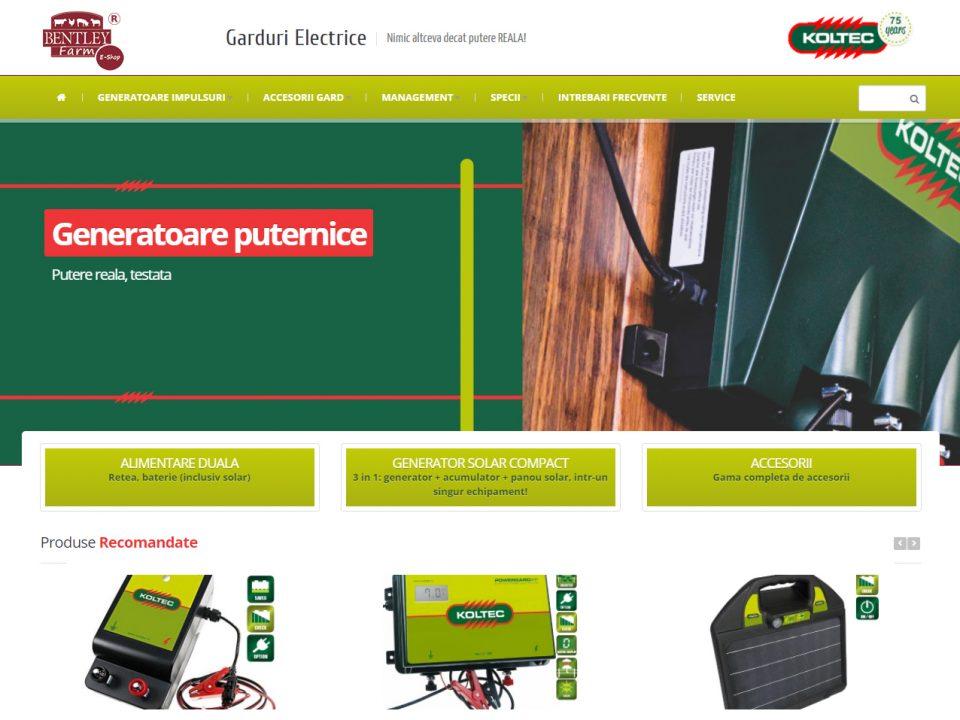 Optimizare SEO | Agentie Web Design Timisoara Gard Electric