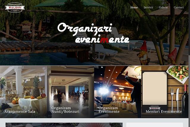 Web Design Timisoara Maldini