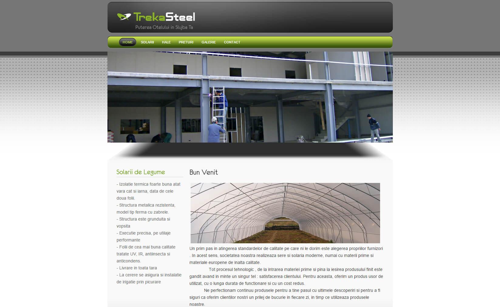 Web Design Timisoara Treka Steel