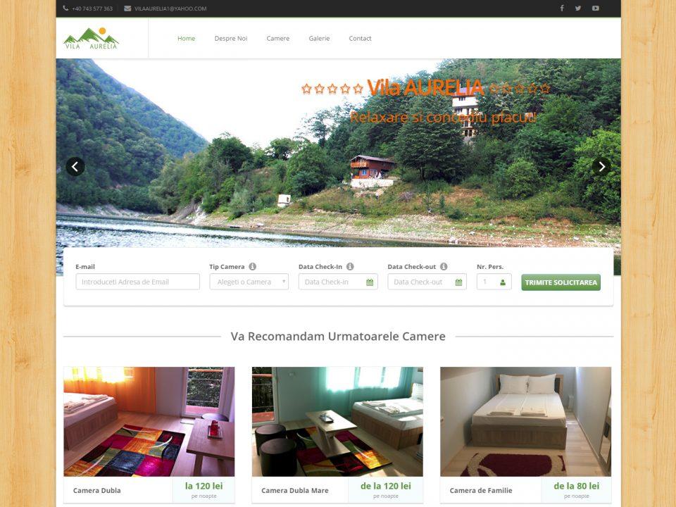 Optimizare SEO | Agentie Web Design Timisoara Vila Aurelia