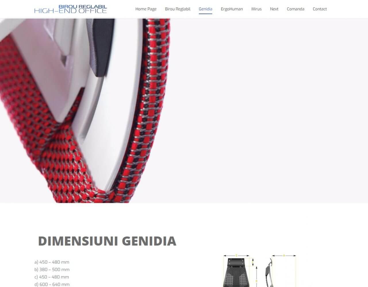 agentie web design timisoara birou reglabil