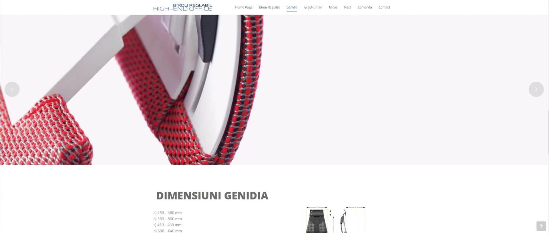 Web Design Timisoara Birou Reglabil