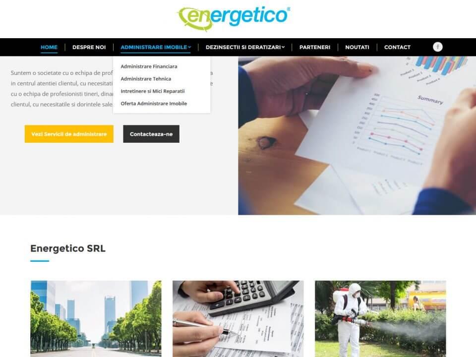 web design timisoara portofoliu energetico