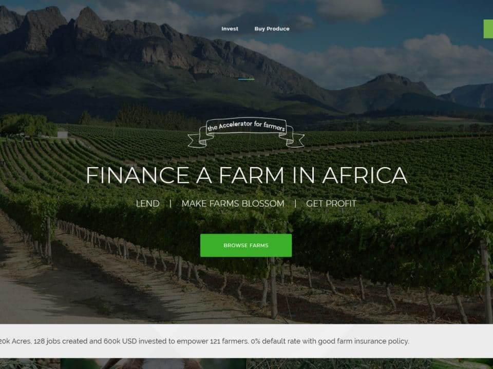 agentie web design ez farming