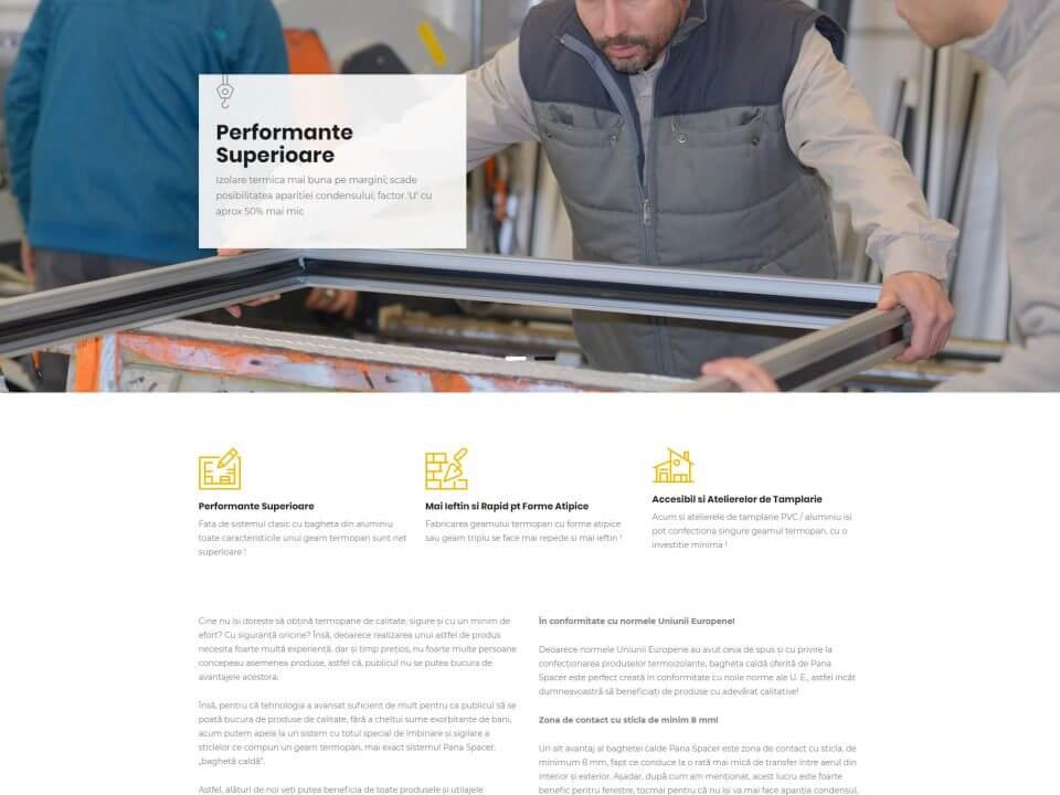 portofoliu agentie seo web design timisoara panaspacer