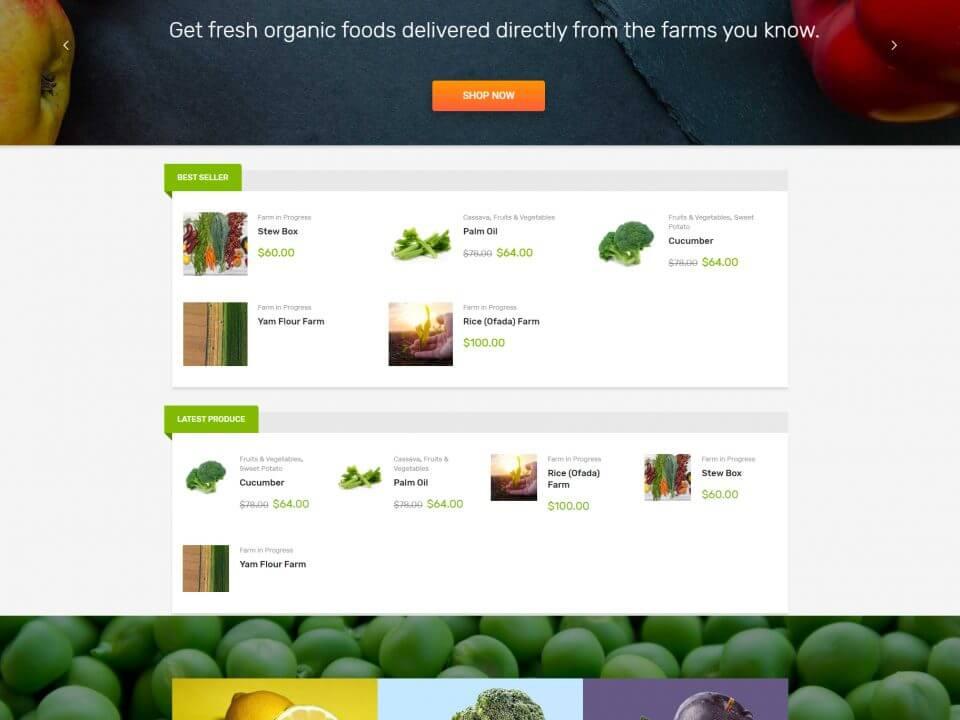 portofoliu agentie seo web design timisoara shop ez farming